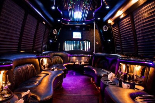 15 Person Party Bus Rental Mesa